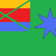 1st State Flag of Vice