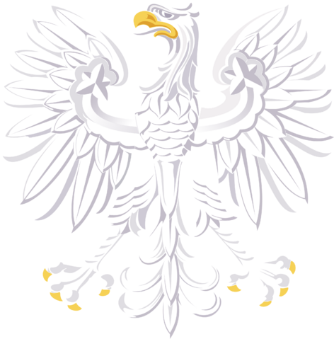 File:Eagle of Confortia.png