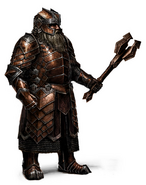 Erebor Heavy Regal Armor Nobleman 2