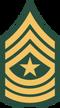 100px-US Army E-9 SGM svg