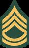 100px-US Army E-7 svg