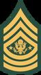 100px-US Army E-9 SMA svg