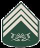 TerceroSargentoArmy