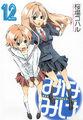 Minami-ke Manga v12 cover.jpg