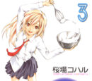 Minami-ke Volume 03