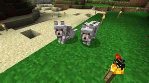 File:WolfMinecraft.jpg