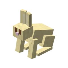 A Gold Bunny