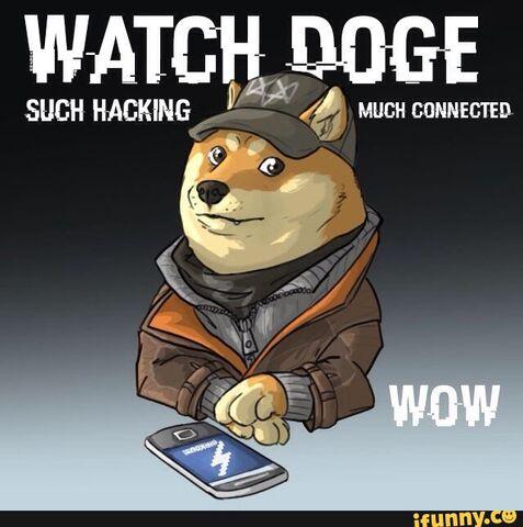 File:Doge of watching.jpg