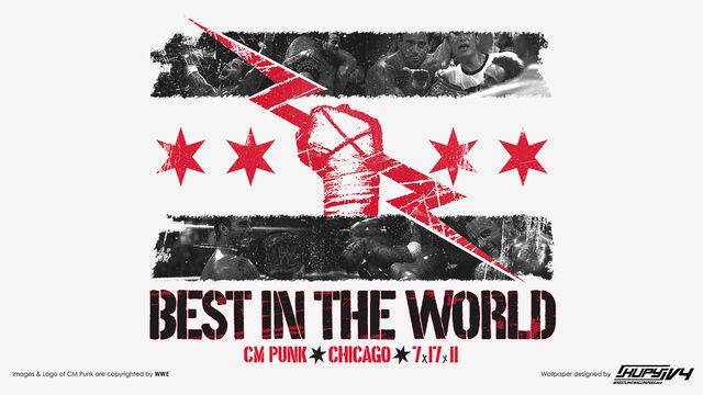 File:Cm Punk - Best in the World.jpg