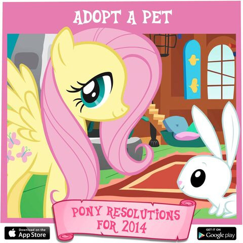 File:Pony Resolutions 2014 Fluttershy.jpg