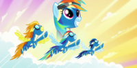 Wonderbolt Rainbow Crash