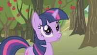 Twilight Sparkle mule S01E04