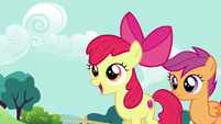 Apple Bloom wants a balloon goldfish S5E19