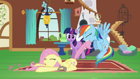 Rainbow Dash dragging Fluttershy S2E21