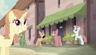 Village ponies watching the Mane Six S5E1