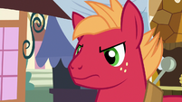 Young Big McIntosh glaring at Applejack S6E23
