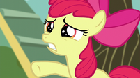 "Apple Bloom calling out ""just wait a second!"" S5E4"