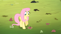 Fluttershy sees rotten apple being thrown onto the ground S4E07