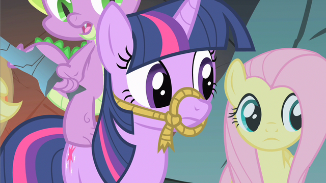 File:Fluttershy & Twilight ok weird S1E19.png