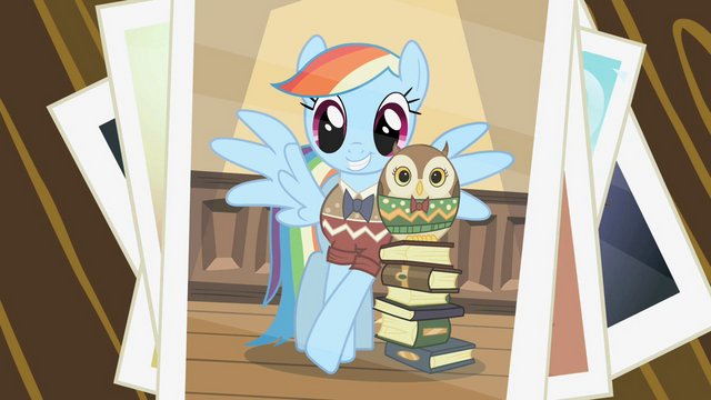 File:Picture of Rainbow Dash with the owl S2E07.png