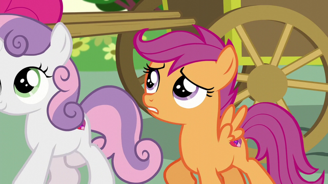 "File:Scootaloo ""Please say you have some interesting news"" S5E19.png"