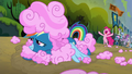 "Pinkie Pie ""that was amazing!"" S6E7.png"