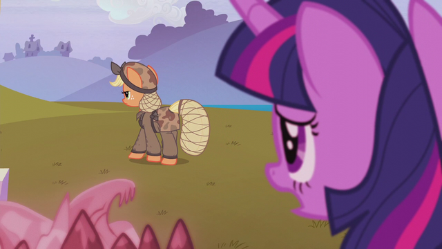 "File:Twilight ""we're going to set things right"" S5E25.png"