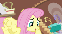 "Fluttershy ""that does make sense"" S4E16"