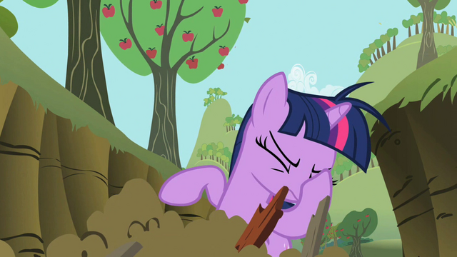 File:Twilight facehoof S02E03.png