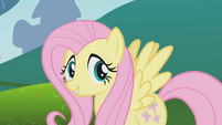 Fluttershy talking to Applejack off-screen S1E4