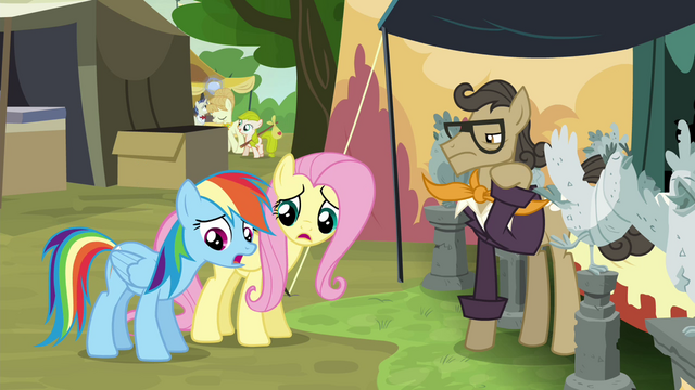 File:RD and Fluttershy let down by antique chicken trader S4E22.png