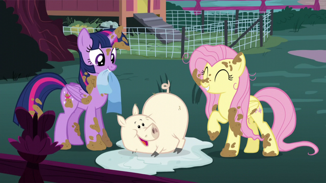 File:Twilight, Fluttershy, and happy clean pig S5E3.png