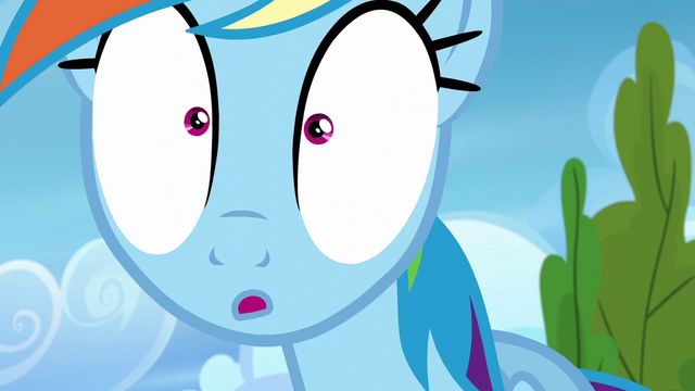 File:Rainbow Dash in wide-eyed surprise S6E7.png