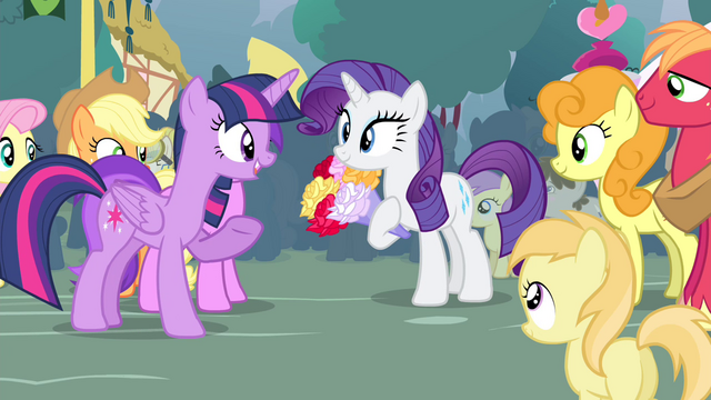 File:Twilight 'Do you know what you're gonna do' S4E13.png