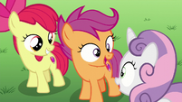 The CMC happy S6E4