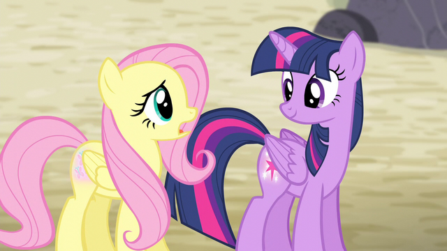 "File:Fluttershy ""the map is calling us somewhere else"" S5E02.png"