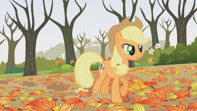 File:Applejack hey! S01E13.png