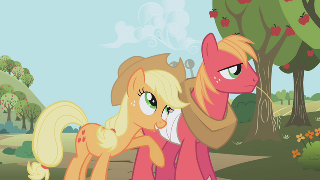File:Applejack and Big Mac S1E04.png