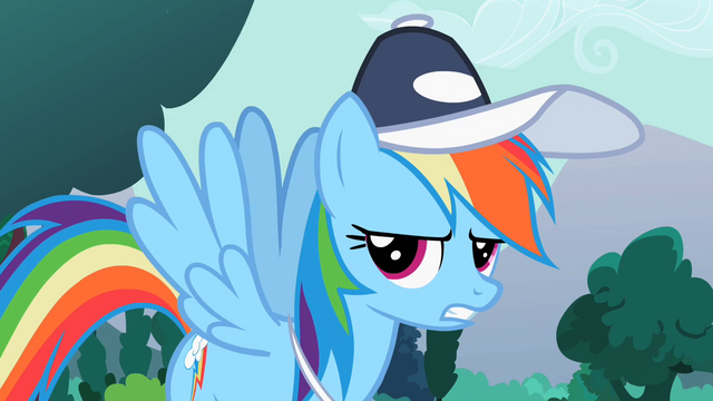 "File:Rainbow Dash ""Fine!"" S2E07.png"