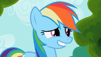Rainbow Dash awkward smile S2E08
