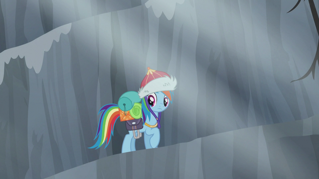 File:Rainbow looks at Pinkie S5E8.png