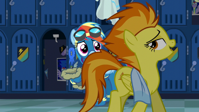 "File:Spitfire ""welcome to the Wonderbolts"" S6E7.png"
