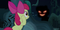 Bloom & Gloom