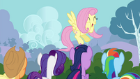 "Fluttershy ""did I mention how tiny they are"" S4E16"