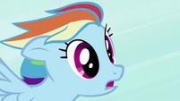 Rainbow Dash Shocked by Transformation S2E7