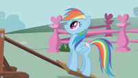 "Rainbow Dash ""Ready?"" S01E04"