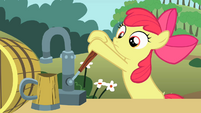 Apple Bloom pours cider again S2E15