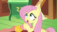 "Fluttershy ""if you're looking for something to do"" S6E17"
