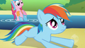 Wings and Cutie Mark Rainbow Dash Error