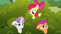 "Apple Bloom ""what do you think that griffon wants?"" S6E19.png"